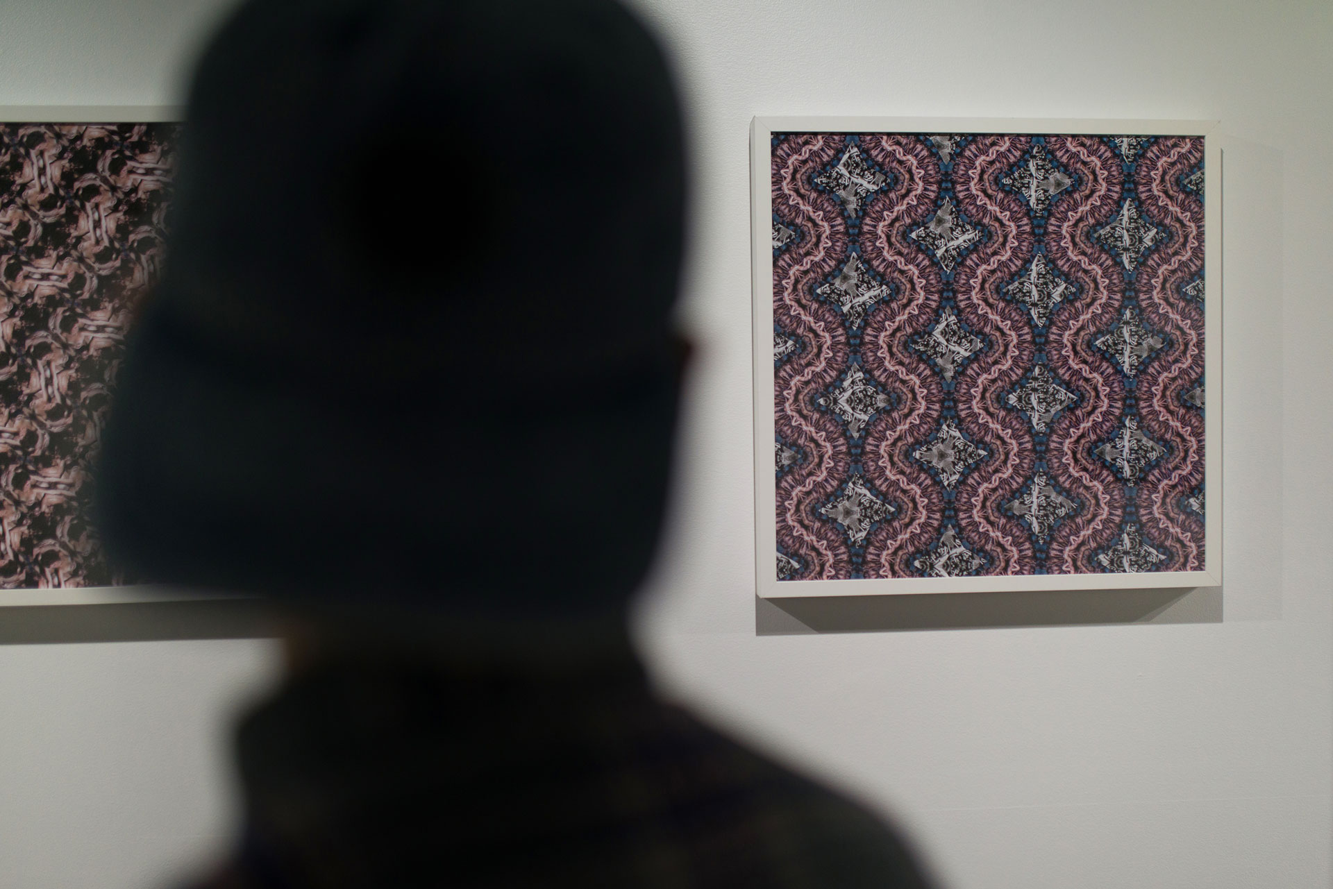 Pandemoniums series on display — Gustavo Chams' Meandering, Inflections and Angry Camels photography exhibition in Vancouver
